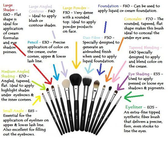 Tuesday Tip - Why We Need These Seven Makeup Brushes : pot ...