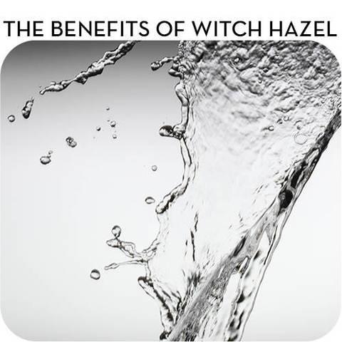 season-change-get-rid-of-witchhazel-toner-tea-trea-e-toner-use-rose-water-formula-to-rebalance-ph-or-a-lightweight-essence