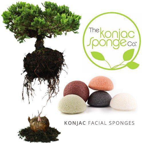 konjacsponge-konjac-sponge-konjac-sponge-angel-face-cloth