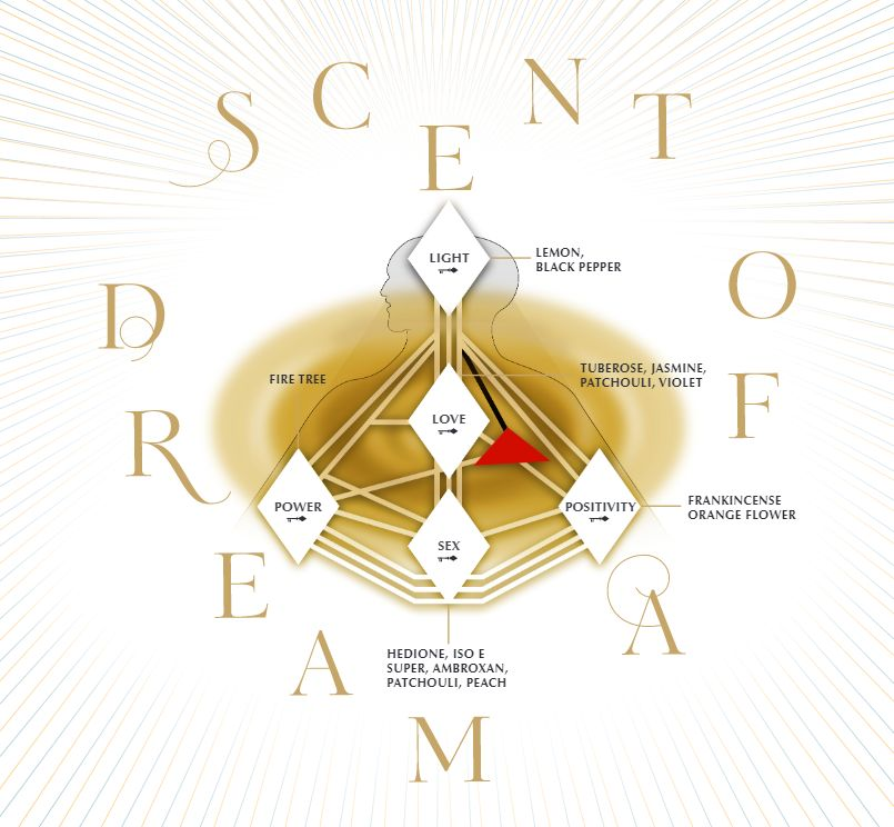 charlotte-tilbury-scent-of-a-dream-fragrance-notes