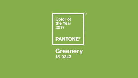 Greenery is the Pantone color shade for 2017-the color of the year!