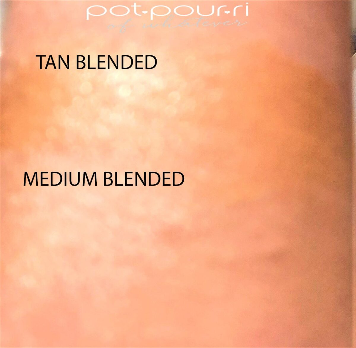 TAN AND MEDIUM HOLLYWOOD FLAWLESS FILTER SWATCHES