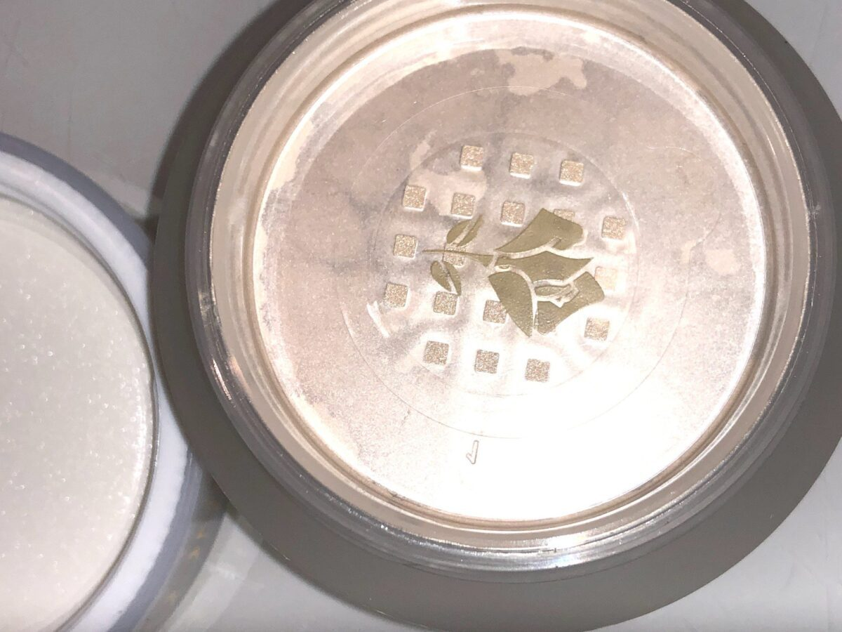 THE PLASTIC GRATE FOR DISPENSING THE LANCOME ABSOLUE PECHE POWDER