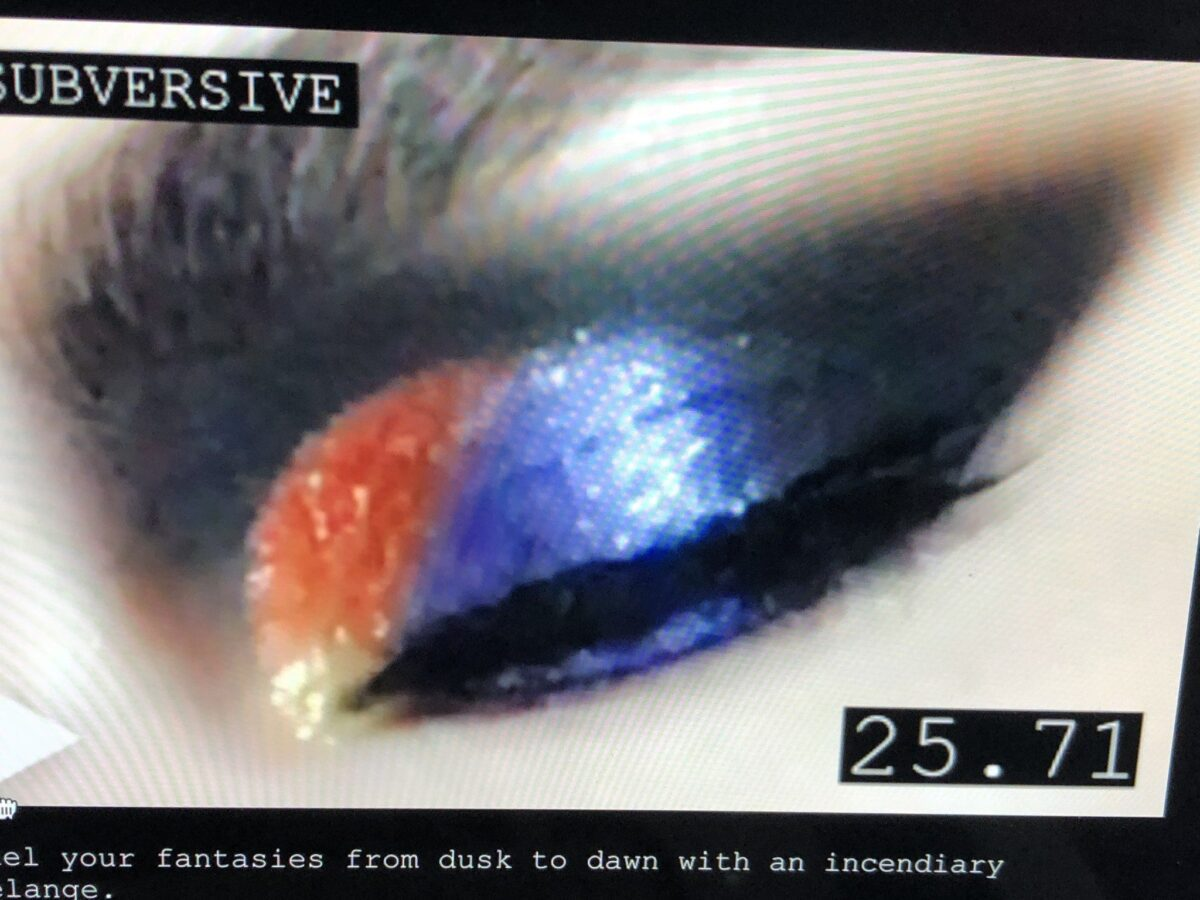 ANOTHER PHOTO FROM THE PAT MCGRATH WEBSITE'S TUTORIAL, THE FINISHED EYE