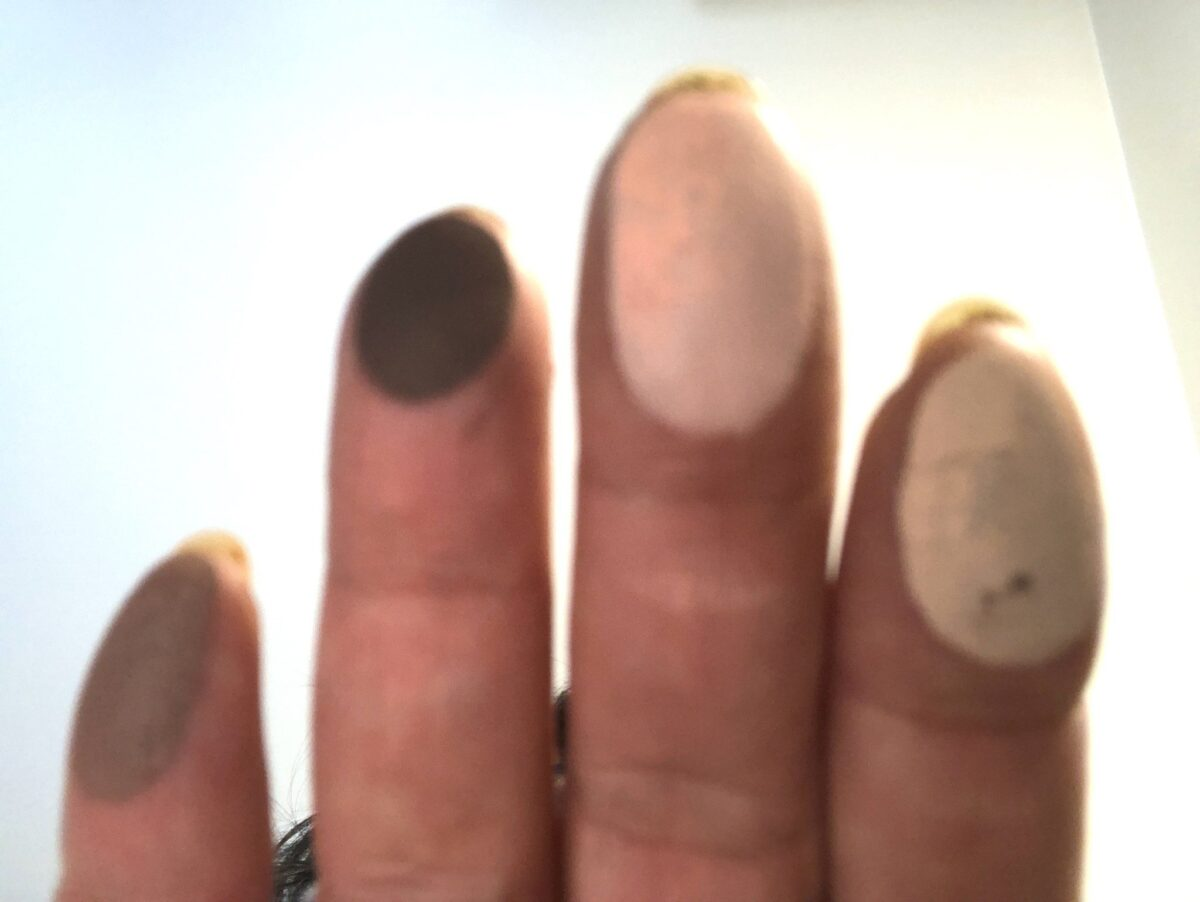 FINGER SWATCHES FOR THE SIGNATURE PALETTE RIGHT TO LEFT: 1,2,3,4