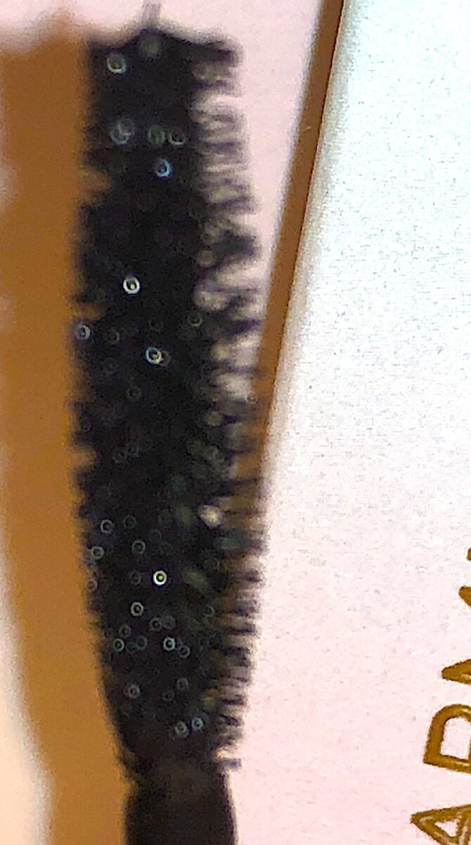 THE BLACK ONYX MASCARA BRUSH