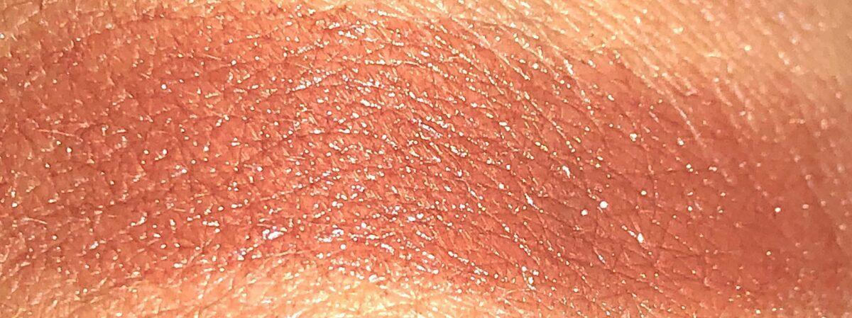 Tamarind Lip Veil swatch