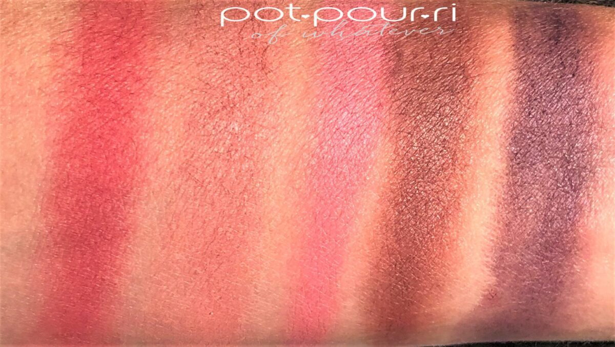 WARM CHROMA PALETTE TOP ROW SWATCHES