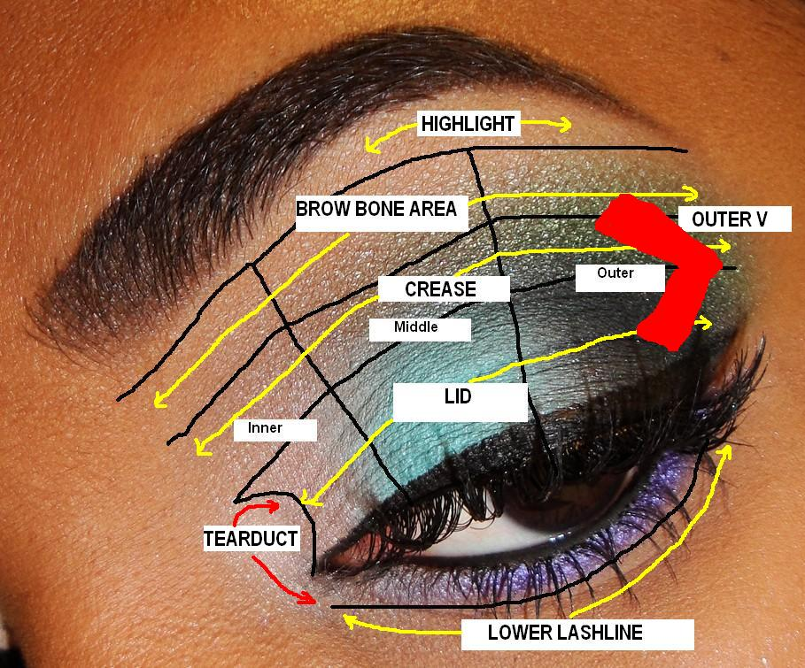 eye-shadow-tips-Eye Diagram 1