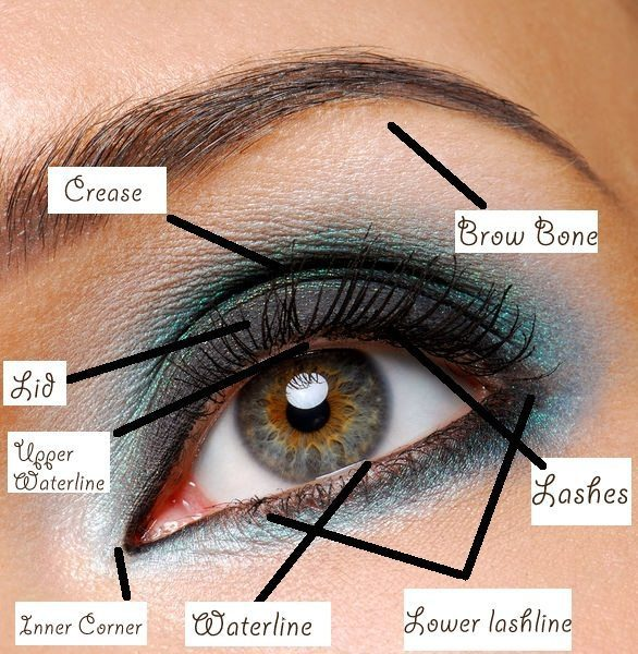 eye-shadow-tips-How-to-do-Smokey-Eye-for-Blue-Eyes