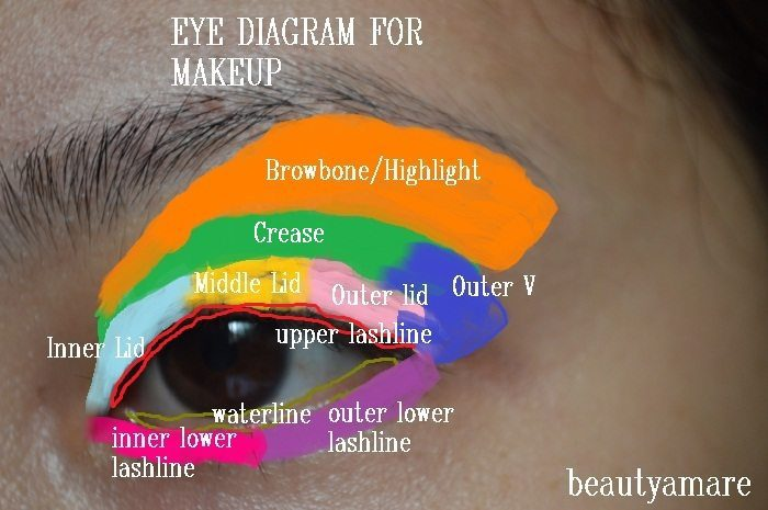 eye0shadow-tips-basic eye diagram
